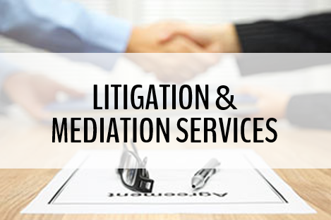 Litigation and Mediation Services