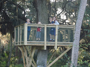 The tree house built by our son-in-law, Pete, for the kids